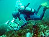 Scuba diving on the Costa Blanca